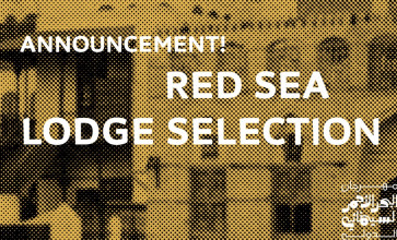 Announcing the 12 selected projects for the Red Sea Lodge 2019!